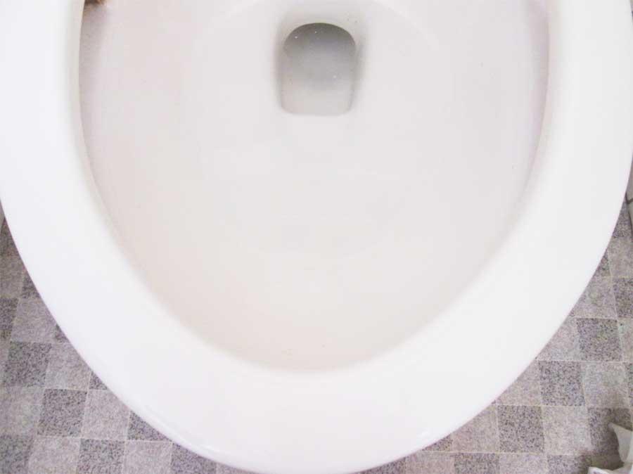 ダイソー 香りのトイレスタンプ式洗浄剤 便器1